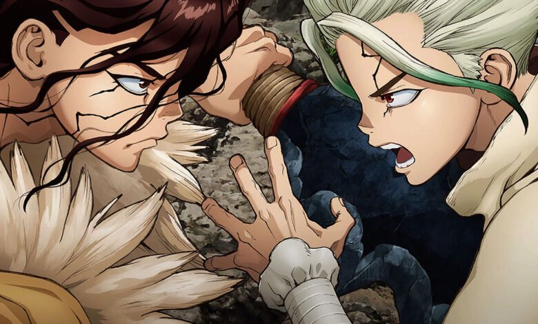 Brown-and-white-haired-anime-fighting