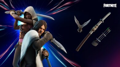 Photo of Fortnite: so you can get Daryl and Michonne from the Walking Dead