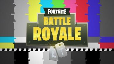 Photo of Fortnite: problem logging in to the Battle Royale and the EGS