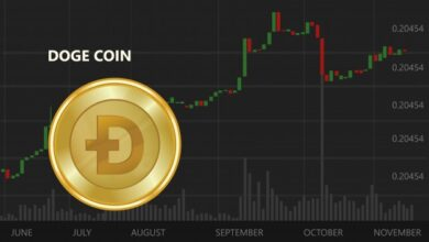 Photo of Michael Saylor questions Dogecoin and highlights the potential of Bitcoin
