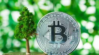 Photo of Bitcoin is much greener than people think