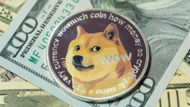 Photo of Experts believe dogecoin price will hit $ 1